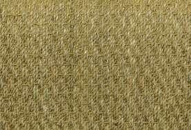 Panama Seagrass